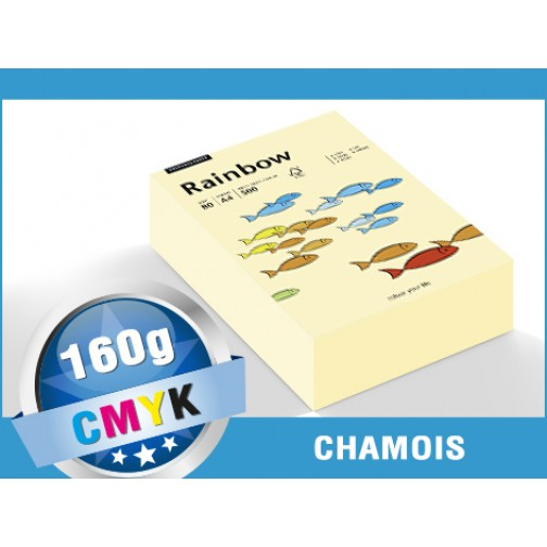 A4 250 Blatt intensivgelb Papyrus 88042395 Druckerpapier Rainbow 160 g//m/²